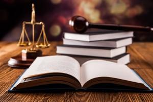 التدابير الاحترازية -المحامية كندة آل عادلي