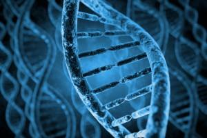 Genetics and Genomics