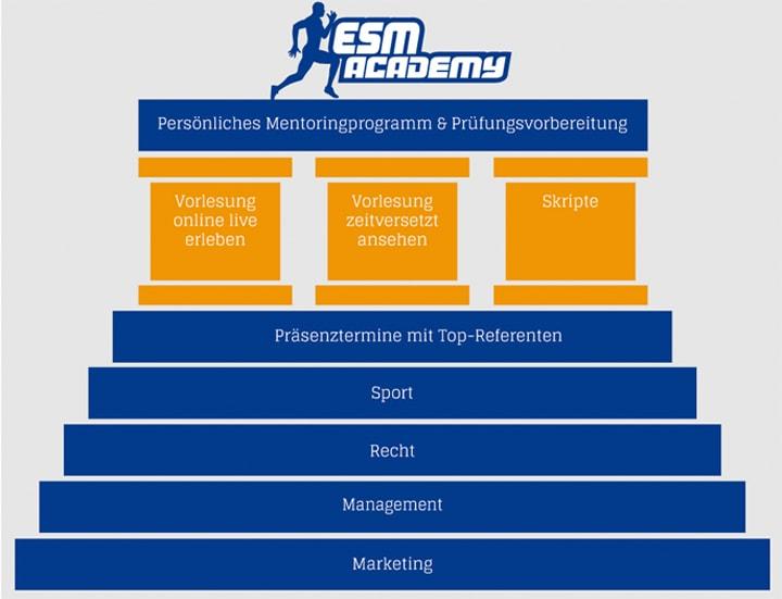 sportmanagement nürnberg